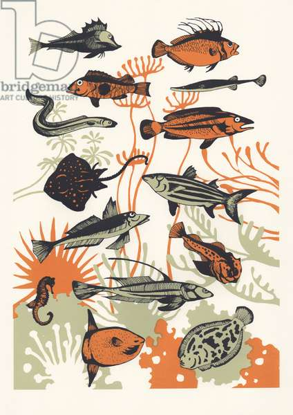 Orange Seaweed Fish, 2015 (screenprint)