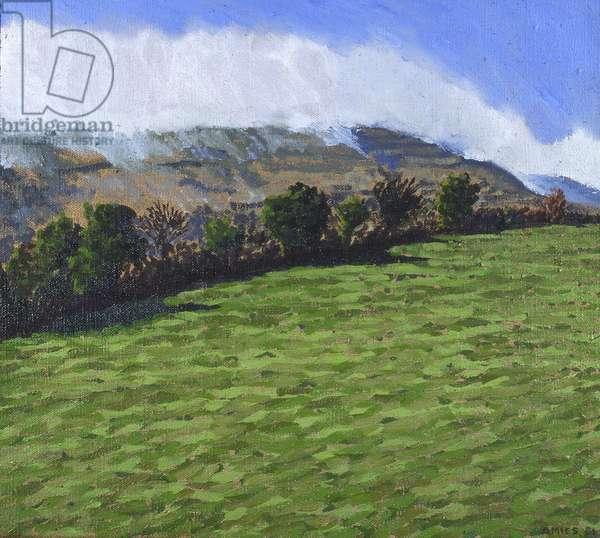 The Burren, Ireland, 1981 (oil on canvas)
