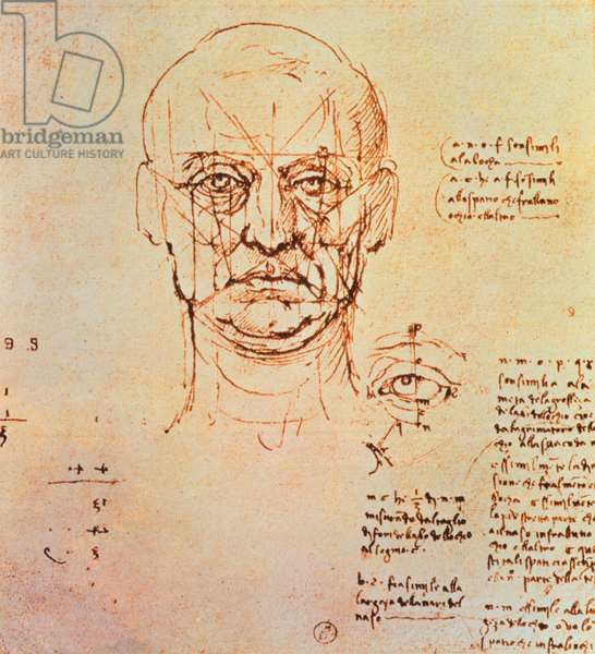 Studies of the Proportions of the Face and Eye, 1489-90 (pen & ink over metalpoint on paper)