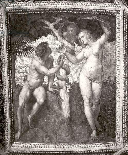 Adam and Eve, from the 'Stanza della Segnatura', c.1508-11 (fresco) (b/w photo)
