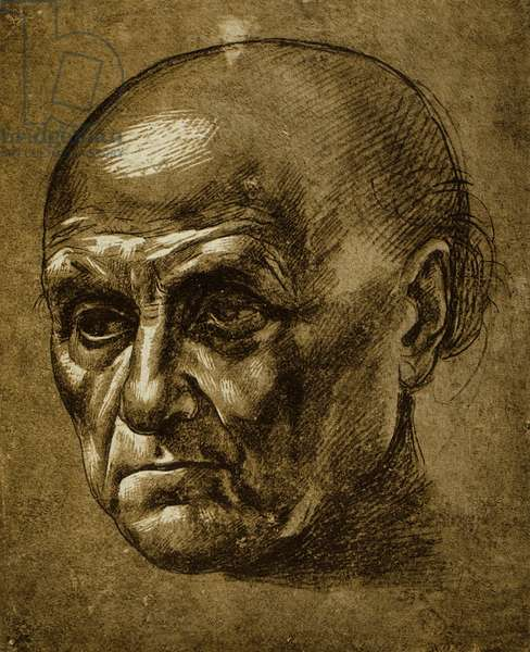 Study of a male face; drawing by Leonardo da Vinci. The Louvre, Paris