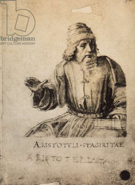 Aristotle; drawing by Raphael. Gallerie dell'Accademia, Venice