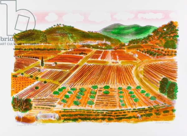 Vineyards at Mirabel, Provence (colour litho)