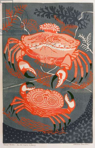 Aesop's Fables: An Old Crab and a Young (linocut)