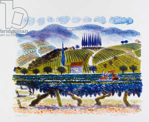 Grapevines, 1996 (colour litho)