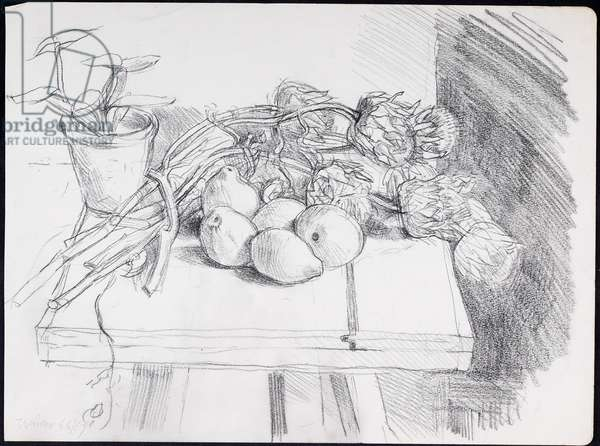 Still Life with Fruit 1966/67 (charcoal on paper)