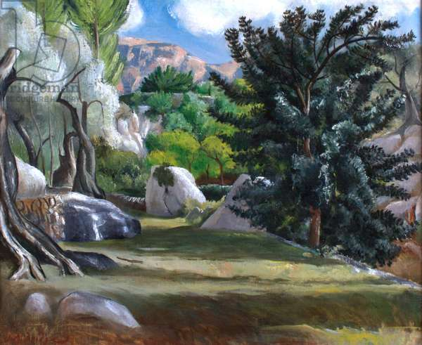 Deya, the Valley (oil on canvas)