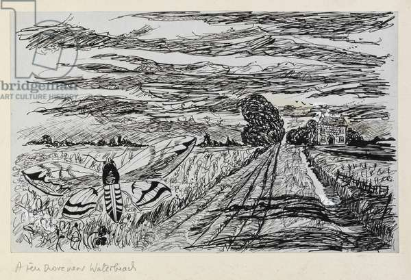 A Fen Drove near Waterbeach, from the series Cambridgeshire Subjects (pen & ink on paper)