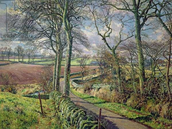 Carse of Gowrie, Near Binn O Fowlis (oil on canvas)