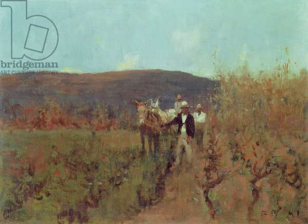 Ploughing Vines, South Africa, 1891 (oil on canvas)
