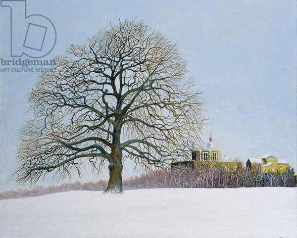 The Royal Observatory, Greenwich Park, 2009 (acrylic on board)