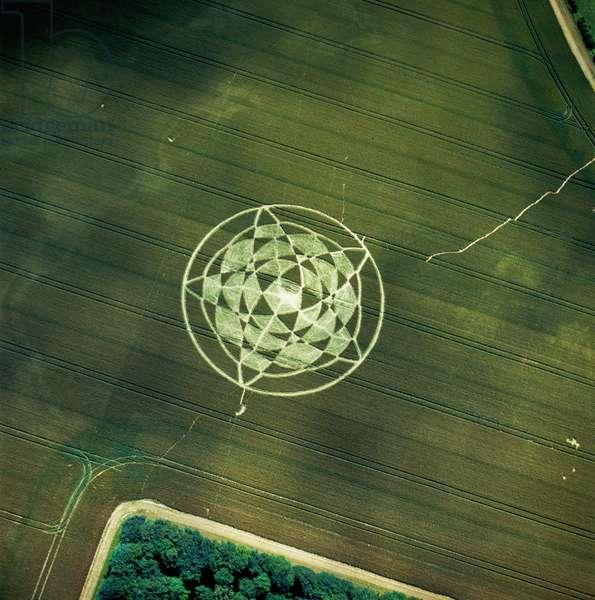 Crop circle in wheat field, Avebury Henge, Wiltshire, 22nd June 2002 (aerial photograph)