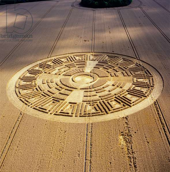 Crop circle in wheat field, Wayland's Smithy, Uffington, Oxfordshire, 9th August 2005 (aerial photograph)