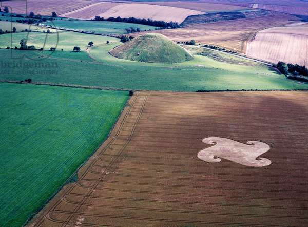 Crop circle in wheat field near Silbury Hill, Wiltshire, 22nd July 1998 (aerial photograph)