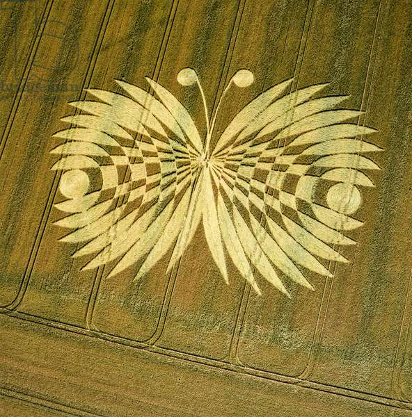 Crop circle in wheat field, Hailey Wood, Ashbury, Oxfordshire, 16th July 2007 (aerial photograph)