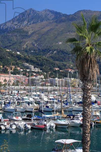 Marina in Menton. French Riviera .