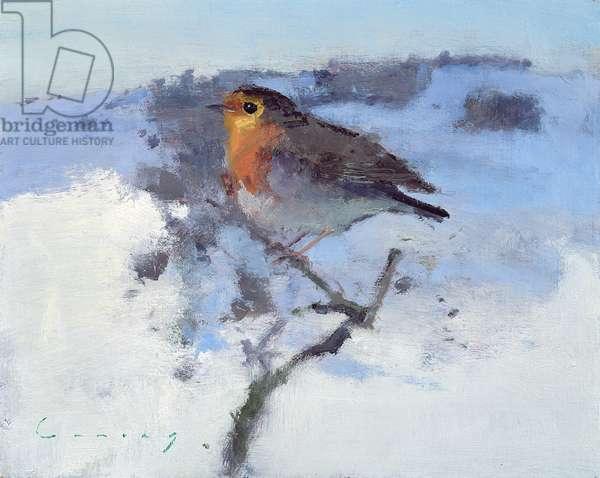 Robin in the winter snow (oil on board)