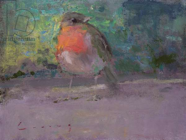 Red Robin (oil on board)