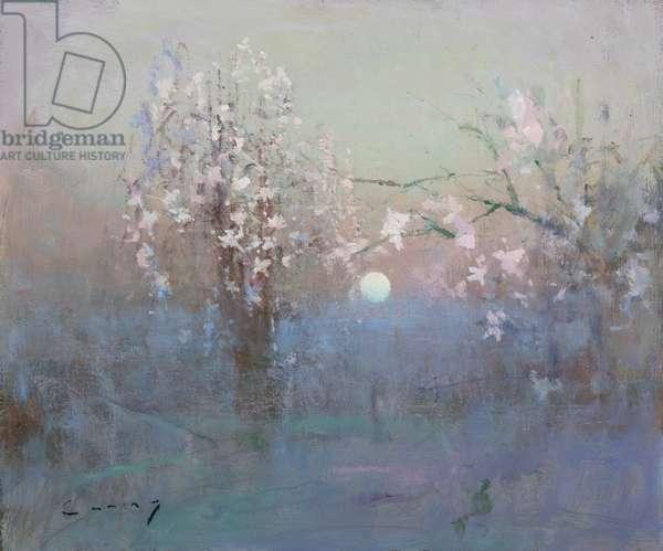 Blossom, Moonrise, 2020 (oil on board)