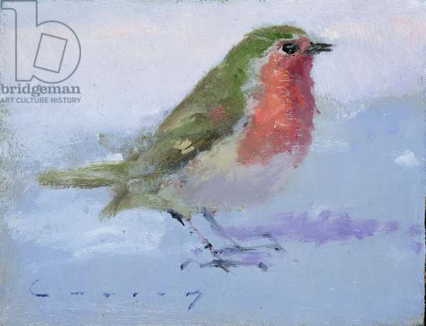 Robin (oil on board)