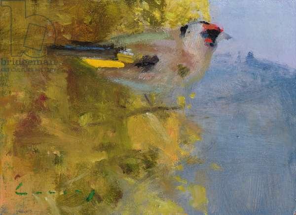 Goldfinch (oil on board)