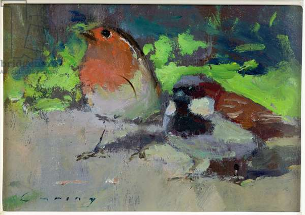 Robin and Sparrow (oil on board)