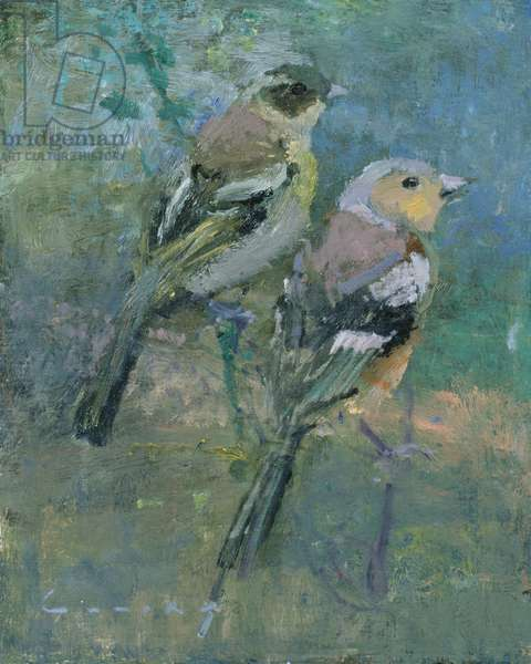 Chaffinches (oil on board)