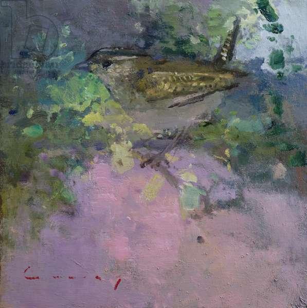Jenny Wren (oil on board)