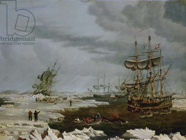 Hull Whalers in the Arctic, 1822 (oil on panel)