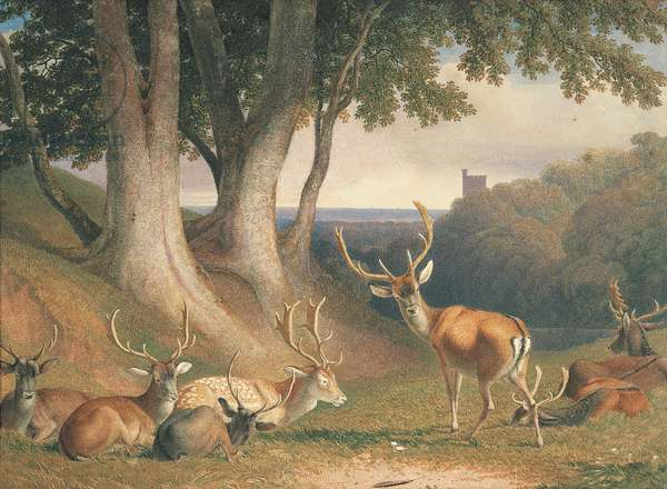 Landscape with Deer, c.1800 (pencil and w/c on paper)
