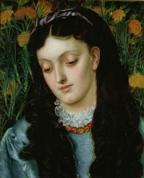 The Beautiful Wallflower, 1870 (oil on panel)