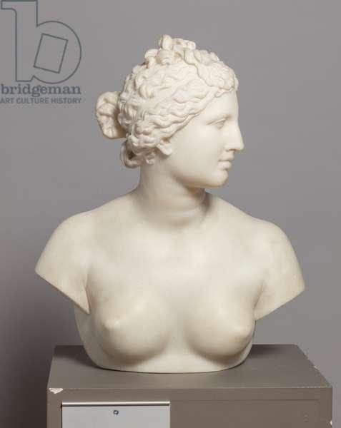 Head of Venus de Medici, c.1850 (marble)