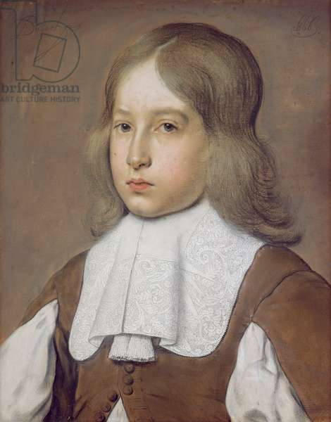 Portrait of a Young Man in a Lace Collar, c.1656 (pastel on paper)
