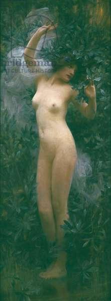 Daphne, c.1890 (oil on canvas)