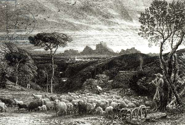 Opening the Fold, Early Morning, 1880 (etching) (b/w photo)