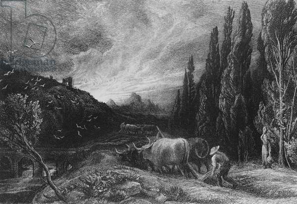 The Early Ploughman, 1861/79 (etching) (b/w photo)