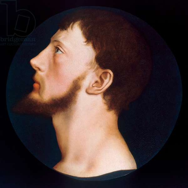 Portrait of Thomas Wyatt the Younger, c.1541 (oil on canvas)