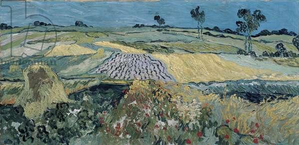 La plaine pres d'Auvers - The Plain of Auvers - Peinture de Vincent van Gogh (1853-1890), 1890 - Oil on canvas, 50x101 - Oesterreichische Galerie Belvedere, Vienna