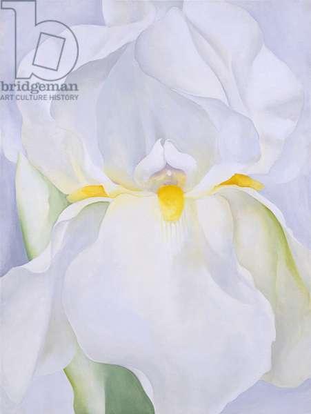 White Iris No. 7, 1957 (oil on canvas)