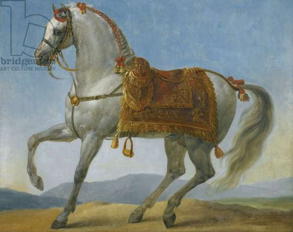 Marengo, the horse of Napoleon I of France par Gros, Antoine Jean, Baron (1771-1835). Oil on canvas, size : 64x80 - Private Collection