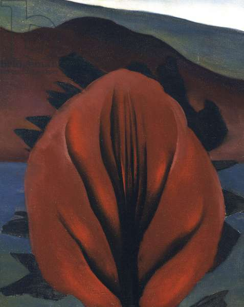 """""Fleur"""" (Flower) Peinture de Georgia O'Keeffe (1887-1986) - Oil on canvas Dim 47x38 cm ©Museum of Modern Art, New York  ©ADAGP (Tel : 33+ 01 43 59 09 79)"