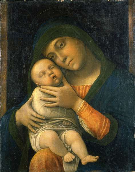 The Virgin and Child, 1490-95 (oil on wood)