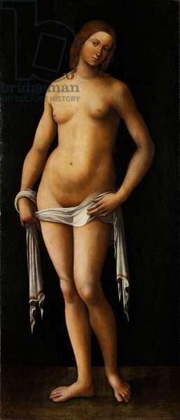 Venus - Peinture de Lorenzo Costa (1460-1535) - 1515-1517 - Oil on wood - 174x76 - Szepmuveszeti Muzeum, Budapest