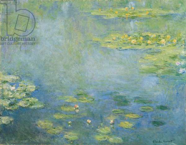 Water Lilies, c.1906 (oil on canvas)