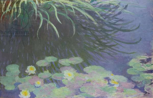 Water Lilies with Reflections of Tall Grass, 1914-17 (oil on canvas)