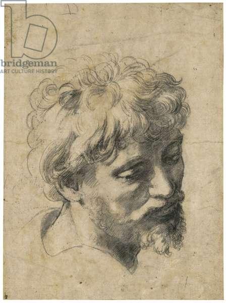 """""""""""Portrait de jeune apotre"""""""" (Head of young apostle) Charbon sur papier de Raphael (Raffaello Sanzio) (1483-1520) Collection privee"""
