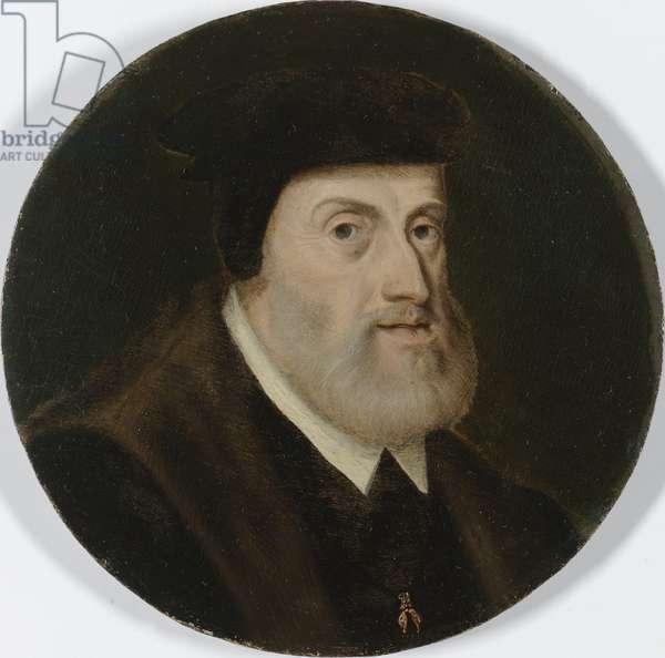 Portrait of Charles V, c.1550 (oil on panel)