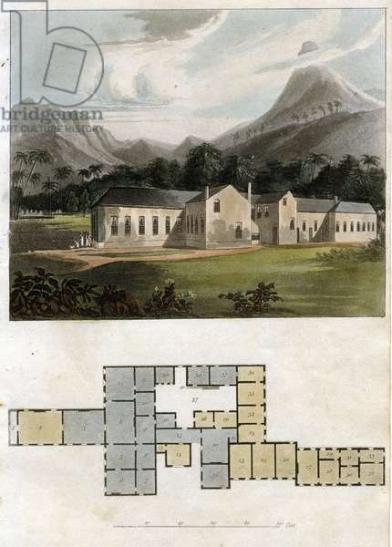 View and Plan of Longwood House, St. Helena: the Residence of Napoleon Bonaparte, 1817 (aquatint)