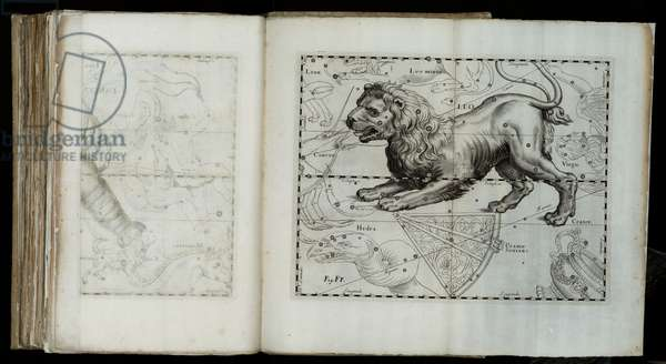 "Leo (constellation), from ""Prodromus astronomiae"", 1690 (etching)"