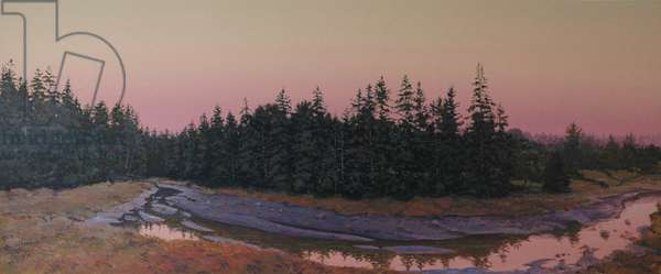 Tidal Creek, 2013 (acrylic on paper)